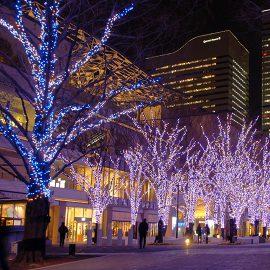 Winter Illumination Yokohama